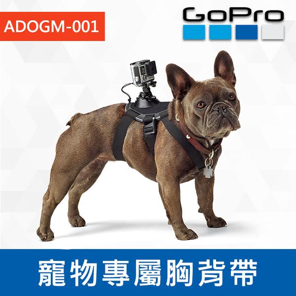 【補貨中1207】完整盒裝 原廠配件 ADOGM-001 寵物綁帶 Fetch 狗用頸帶 穿戴式 GoPro