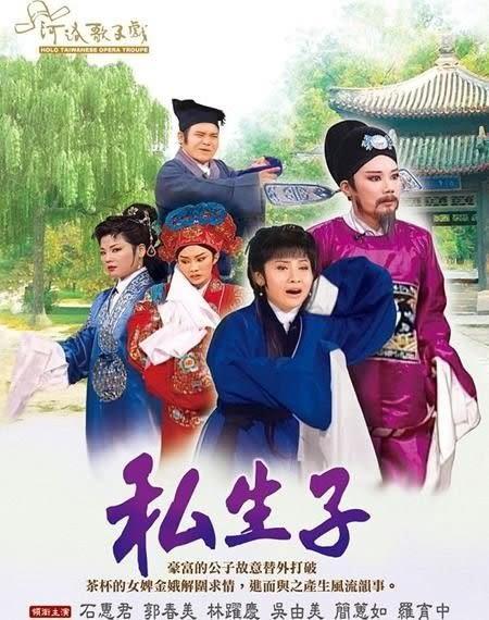 河洛歌子戲  私生子 DVD (購潮8)