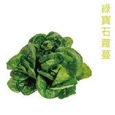 預購 【安心蔬食】水耕蔬菜-綠寶石蘿蔓(150g)
