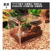 爬箱守宮蜥蜴蜘蛛蠍子角蛙甲蟲寄居蟹爬蟲箱亞克力透明爬蟲飼養盒 10*9*8 igo免運