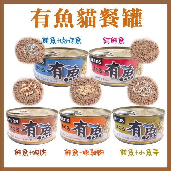 *KING WANG*【48罐組】有魚貓餐罐(五種口味)-170g(隨機出貨)