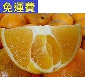 2021年10月再也吃不到的 肚臍橙 花蓮鶴岡無毒農業 7斤