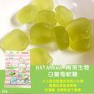 日本進口 HAYAKAWA 角落生物白葡萄軟糖40g
