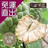 沁甜果園SSN. 台東大目釋迦(6-7顆裝/5台斤)【免運直出】