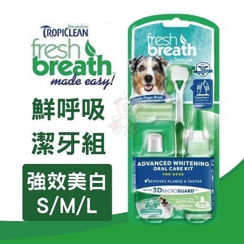 *WANG*鮮呼吸 Fresh breath 強效美白潔牙組 ( S / M / L) 維護牙齦健康