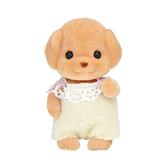 森林家族 玩具貴賓狗嬰兒_EP21970