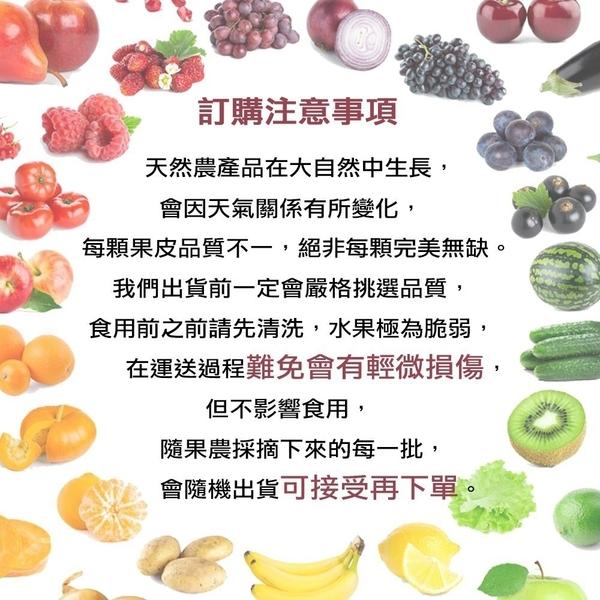 【果之蔬-全省免運】南非香甜脆口無蠟蜜蘋果【9kg±10%/40-50顆】