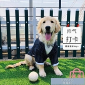 狗狗西裝大型犬金毛拉布拉多薩摩耶寵物衣服夏季薄款 【快速出貨】
