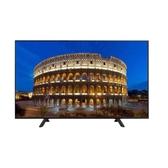 (含運無安裝)Panasonic國際牌43吋電視電視TH-43F410W