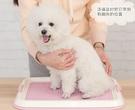 寵物廁所 愛麗絲狗狗廁所便便器寵物便盆尿尿盆小型犬泰迪用品【快速出貨八折下殺】