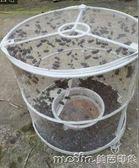 10個裝蒼蠅籠捕蠅器環保捕蠅籠滅蠅蠅子籠滅蒼蠅籠捕蒼蠅工具 美芭