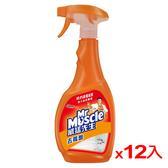威猛先生去霉劑噴槍瓶500g*12(箱)【愛買】