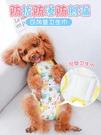 母狗狗生理褲女泰迪月經期安全衛生巾小狗姨媽小型寵物 『洛小仙女鞋』