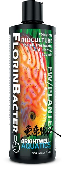 BWA【淡水專用硝化菌種 500ml】有效提升新缸硝化系統建立 魚事職人