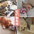 狗狗貓咪鈴鐺狗球球玩具