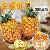 【果之蔬】爆汁台南金鑽鳳梨(1支/約1.2斤±10%)