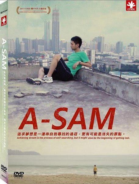 阿SAM DVD A-Sam機不可失追尋夢想迷茫未來回到原始自然的懷抱雲南北京電影夢人生期望意見