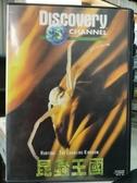 挖寶二手片-P17-085-正版VCD-其他【昆蟲王國】-Discovery自然類(直購價)