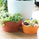 〔大號不破〕CARMO寬扁圓盆塑膠花盆(4吋,5吋) 園藝資材【F05001】