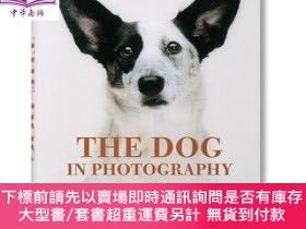 二手書博民逛書店罕見原版 動物攝影 照片中的狗 英文原版 The Dog in PhotograY454646 Miles B