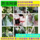 防果蠅金蠅針蜂網袋黃瓜苦瓜絲瓜番茄防蟲袋瓜果蔬菜套袋尼龍網袋 快速出貨