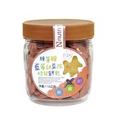 【愛吾兒】脆妮妮 Nutrinini 頭等艙藍莓甜菜根幼兒餅乾-110g