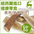 PetLand寵物樂園《紐西蘭天然寵物食品》100%鹿角 60 - 80g / 潔牙天然保養品