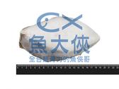 1D6A【魚大俠】FH220大比目魚切片無洞厚冰35%(370g±10%/片)厚冰款