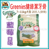 寵物FUN城市│美國Greenies健綠【藍莓口味 7~11kg/20支入 12oz】中型犬用潔牙骨 狗零食