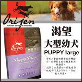 *KING WANG*Orijen渴望 大型幼犬11.4公斤