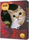 《肚臍是隻貓》首刷限定特仕版:內含喵星人收藏書盒+2017年CD盒桌曆+聖誕貓PVC夾...