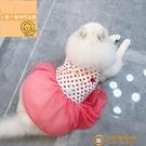 中大型犬狗狗衣服波點網紗裙子夏日波點草莓甜心【小獅子】