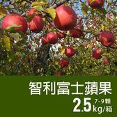 【屏聚美食】特大智利富士蘋果2盒(2.5kg/禮盒/7-9顆)