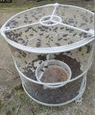 10隻蒼蠅籠捕蠅器環保捕蠅籠滅蠅蠅子籠滅蒼蠅籠捕蒼蠅工具 英雄聯盟