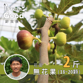 【鮮食優多】花田有機轉型無花果2斤(18-20顆)