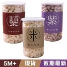 Let's SAGA  寶寶米餅 (35g) 紅藜麥/原味/紫米 0288 副食品 嬰兒餅乾