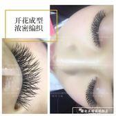 新款漁網編織型睫毛潘多拉山茶花開花網狀Y型嫁接種植假睫毛自然『韓女王』