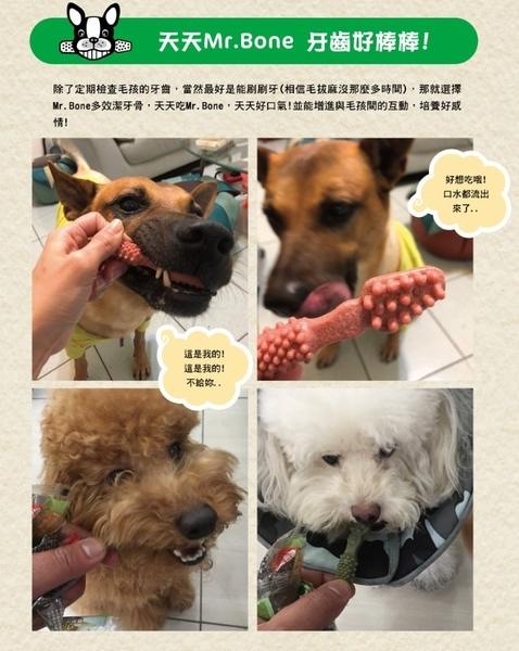 ◆MIX米克斯◆Mr.Bone 多效潔牙骨 -五種口味  小包 (S號) 【1包/95g】