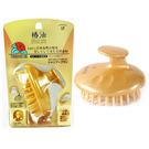 【日本進口】 IKEMOTO 池本 椿油 山茶花油 護髮按摩梳 美髮梳 池本梳 TSG-777 000542