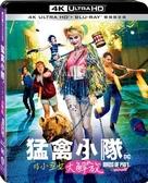 【停看聽音響唱片】【BD】猛禽小隊:小丑女大解放 雙碟限定版『4K』