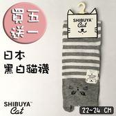 日本原宿貓襪 Shibuya Cat  灰色3號 22~24CM 哇襪現貨