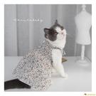 貓咪衣服夏季薄款透氣純棉 度假風褶皺吊帶裙 網紅同款公主裙【小獅子】