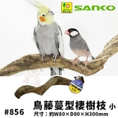 *KING*日本SANKO 鳥藤蔓型棲樹枝(小)#856.營造鳥籠有趣的遊樂場式棲息地.鳥籠必備