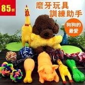 寵物用品狗狗玩具磨牙耐咬發聲球毛絨泰迪幼犬金毛小型大型犬訓練【免運八五折免運】