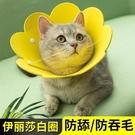 伊麗莎白羞恥圈寵物貓頭套恥辱圍脖絕育套圍防咬狗防舔圈貓咪項圈 「夢幻小鎮」
