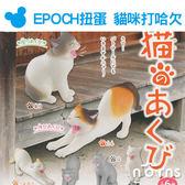 Norns【EPOCH扭蛋 貓咪打哈欠】玩具 公仔 日本轉蛋 伸懶腰 懶懶 動物 寵物 療癒