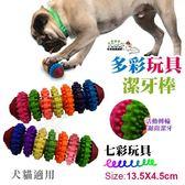 *WANG*寵喵樂《寵物七彩玩具02152318》TPR耐咬耐磨 環保無毒 磨牙 健齒玩具-L號1入 狗貓適用