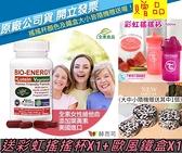 赫而司-美國進口新元氣錠 BIO-ENERGY綜合素食維他命(全素食)