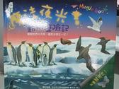 【書寶二手書T5/少年童書_DHC】魔法夜光書:動物歷險記_克里斯提亞諾.貝托魯奇
