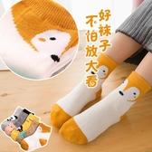 兒童襪子棉春秋冬季男童女童寶寶大童中筒襪1-3-5-7-9-10-12歲8【快速出貨】